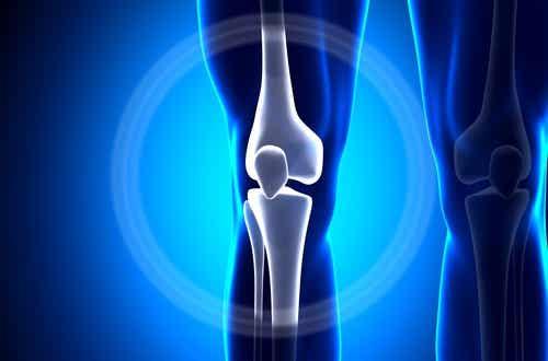 Wapń - Wskazówki jak zapobiegać jego utracie z kości