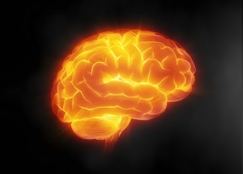 4#:ochrona mózgu.jpg