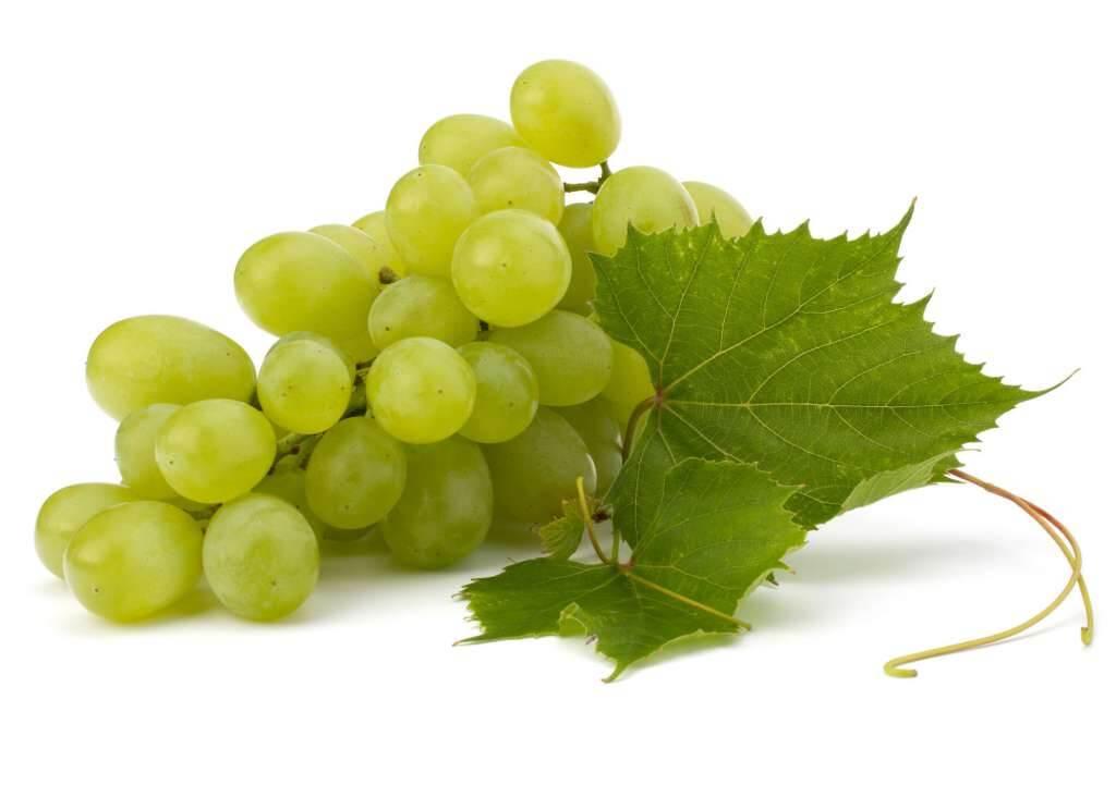 9#:zielone-winogrona.jpg