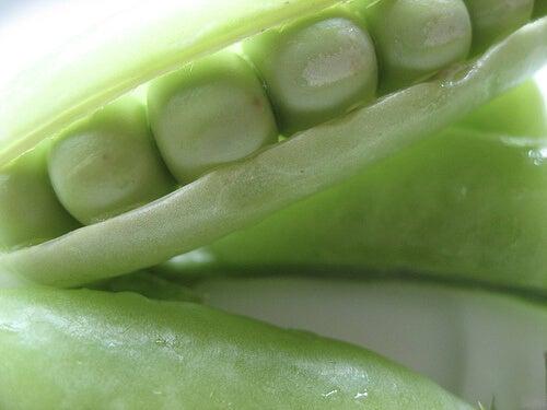 4#:zielony groszek-Rak jelita grubego.jpg