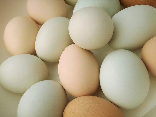 Jajka na kolację