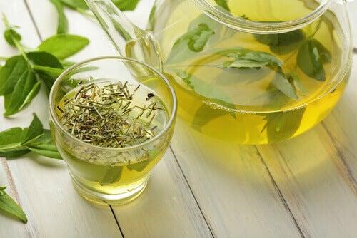 Zielona herbata na spalanie tłuszczu