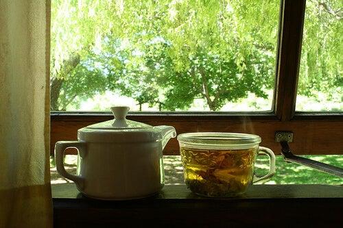 6#:Napar brzozowy-retencja wody.jpg