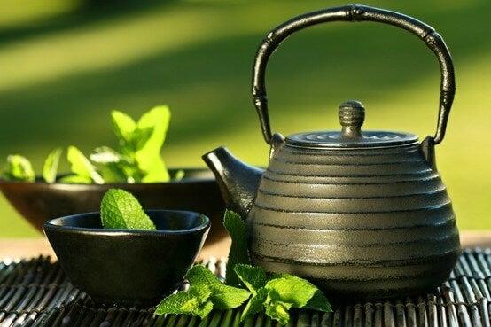 Zielona chińska herbata