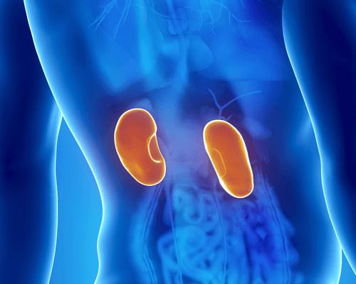 Chore nerki – symptomy i leczenie