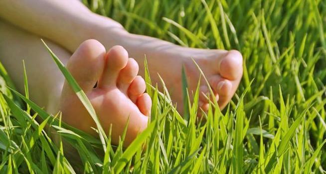 3#:Stopy na trawie-stopy.jpg