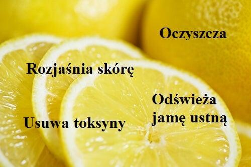 2#:cytryna.jpg