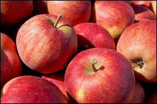 4#:owoców.jpg