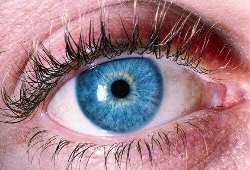 1#jak dbać o wzrok