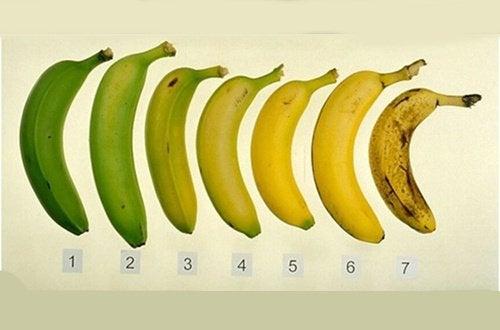 1#:Które-banany-są-zdrowsze-zielone-czy-dojrzałe