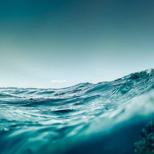 morze, jama ustna