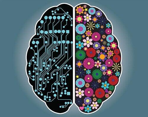 Rozsądek czy intuicja? Czym kierujesz się w życiu?