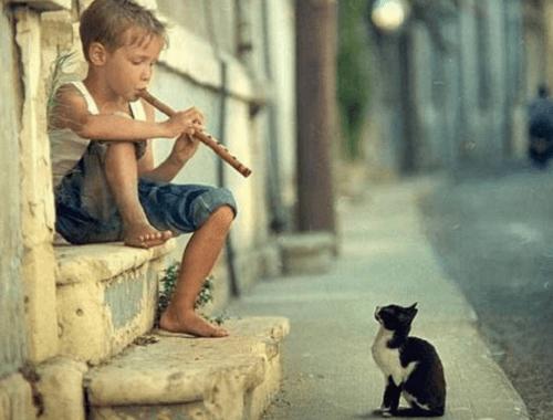 Chłopiec gra na flecie