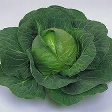 Kapusta i warzywa