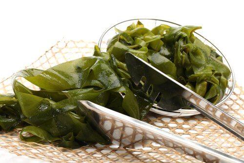 Zielone algi morskie