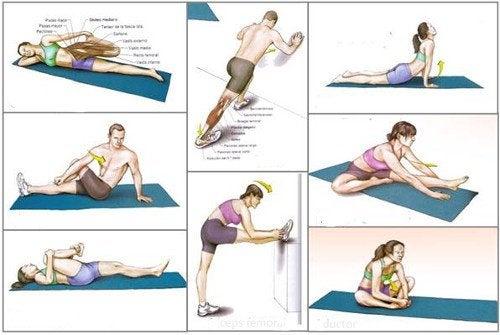 Zestaw ćwiczeń rozciągających