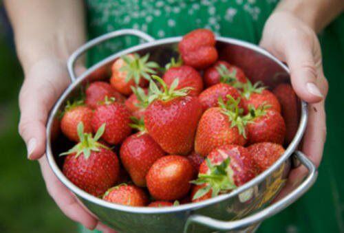 Świeże truskawki, a zdrowie naszej skóry