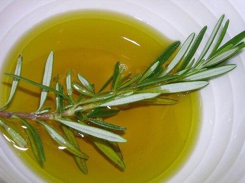 Gałązka rozmarynu w oliwie z oliwek