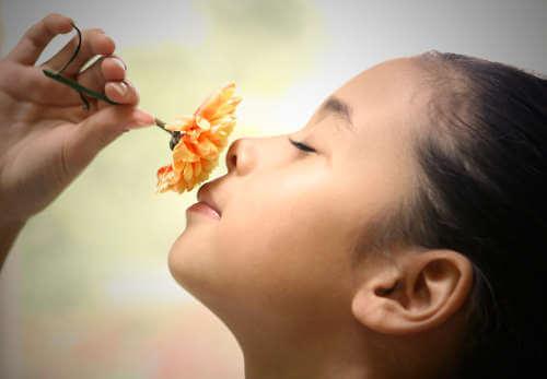 Dziecko wąchajace kwiatek