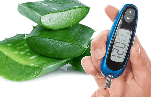 Aloes w leczeniu cukrzycy