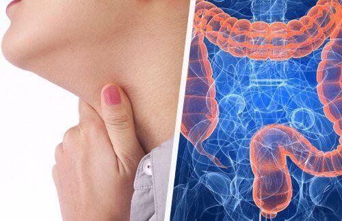 Ból gardła, a problemy jelitowe