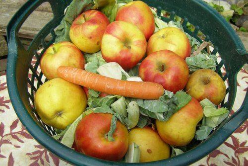 Mieszanka owoców i warzyw