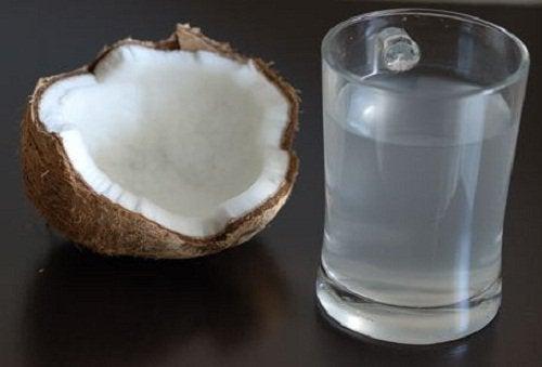 Woda kokosowa – Wpływ na Twoje ciało