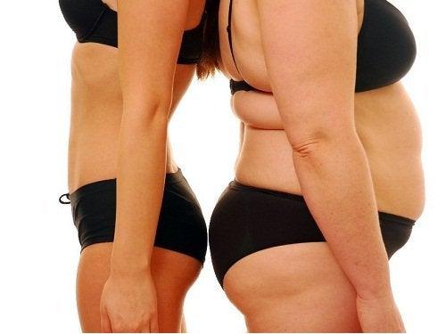 Porównanie szczupła z nadwagą