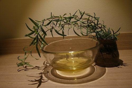Terapeutyczny olejek z drzewa herbacianego