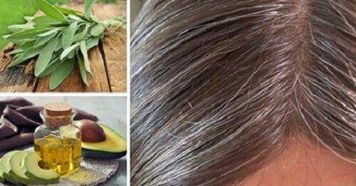Siwe włosy – Skąd się biorą i jak je ukryć?