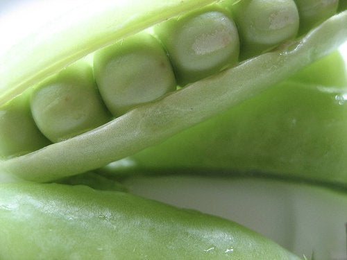 Świeży zielony groszek