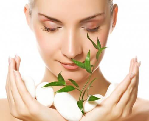 Rośliny lecznicze, które łagodzą stres: 7 przykładów