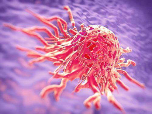 Komórka nowotworowa