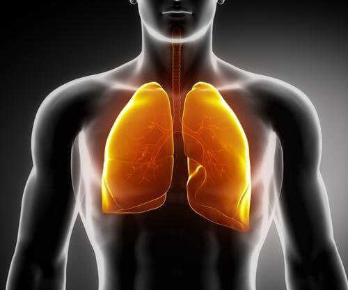 Czyste płuca