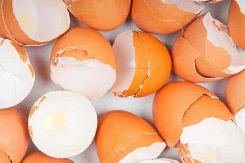 Niezwykłe zastosowania skorupki jajka