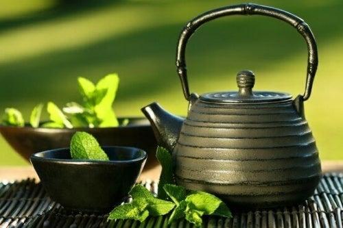 Czajnik do parzenia herbaty japońskiej