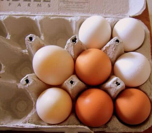 Jajka w foremce