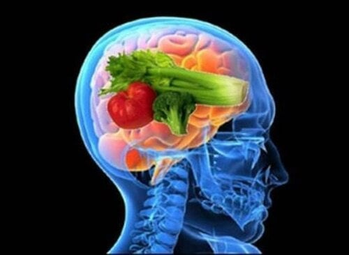 Mózg na diecie