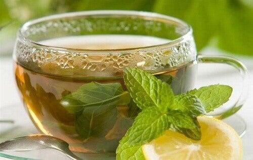 Napar z liści herbaty