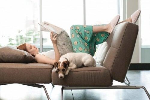 Relaks w domu z psem