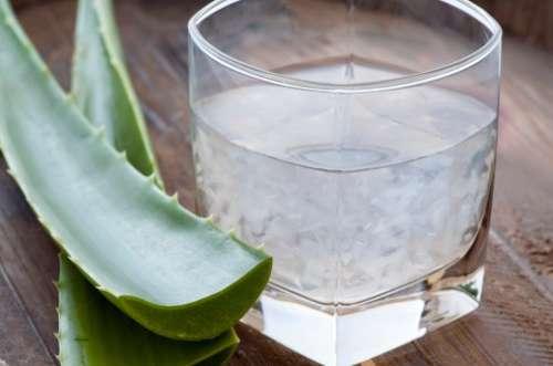 Aloes i zdrowa okrężnica