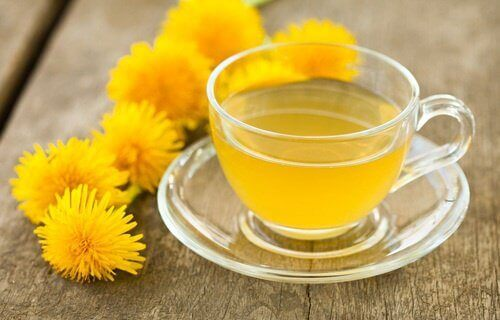 Herbata z mniszka lekarskiego
