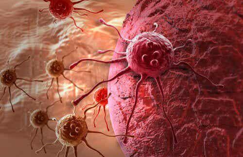 Rak - poznaj lekarstwo lepsze niż chemioterapia