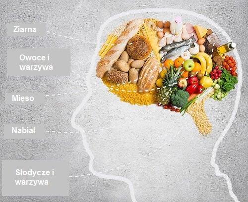 Mózg wypełniony żywnością