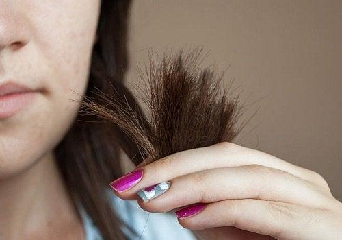 Rozdwajające się końcówki włosów