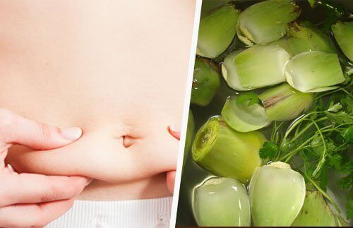Karczochy pomagają schudnąć