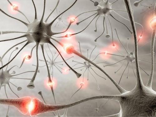 Zdrowy mózg - neurony a sen