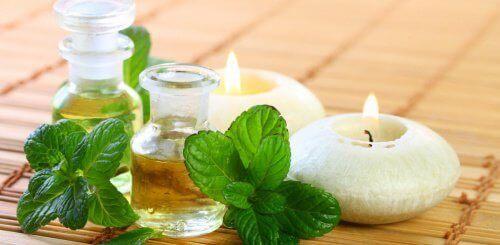 Olejek miętowy – Przygotuj go sama