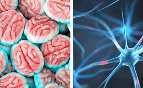 Cukier a mózg