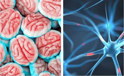 Cukier a mózg - a co gdybyś przestała słodzić?
